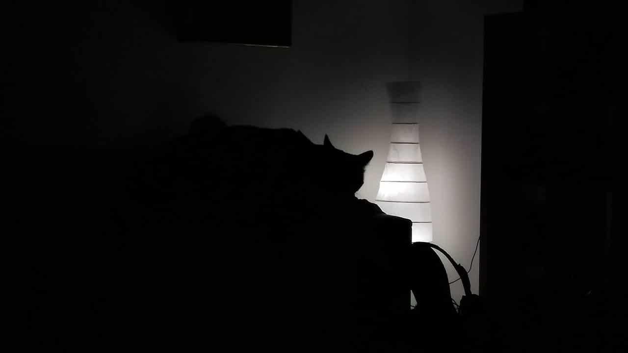 La luce, che stramberia
